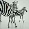 07 57 18 558 mark florquin zebra africa 3d model 4 4