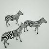 07 57 18 693 mark florquin zebra africa 3d model 5 4