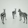 07 57 18 816 mark florquin zebra africa 3d model 6 4