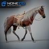 08 12 31 871 horses nonecg 02 4