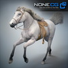 08 12 31 984 horses nonecg 03 4