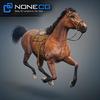 08 12 32 103 horses nonecg 04 4