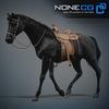 08 12 32 280 horses nonecg 05 4