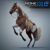 08 12 32 499 horses nonecg 07 4