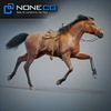 08 12 32 659 horses nonecg 08 4