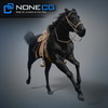 08 12 32 904 horses nonecg 10 4