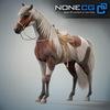 08 12 33 28 horses nonecg 11 4