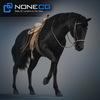 08 12 33 441 horses nonecg 14 4