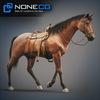 08 12 33 807 horses nonecg 18 4