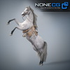 08 12 34 16 horses nonecg 19 4