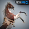 08 12 34 795 horses nonecg 23 4