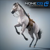 08 12 35 30 horses nonecg 24 4