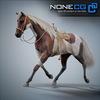 08 12 35 543 horses nonecg 28 4