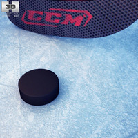 Hockey Stick & Puck 3D Model