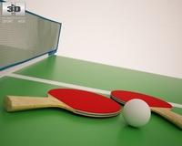 Ping Pong Rackets & Balls 3D Model