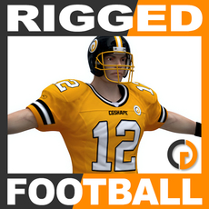Rigged American Football Player 3D Model