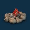 08 15 40 135 002 sren bonfire 4