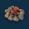 08 15 40 222 003 sren bonfire 4