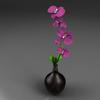 08 45 23 322 flores1 4
