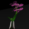 08 45 25 756 flores6 4