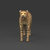 09 18 03 240 low poly leopard 02 4