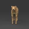 09 18 03 240 low poly leopard 02 4