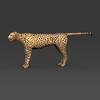 09 18 03 459 low poly leopard 03 4