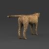 09 18 03 713 low poly leopard 05 4