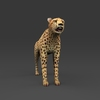 09 18 03 992 low poly leopard 08 4