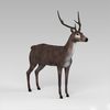 09 18 25 310 low poly buck 06 4