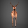 09 19 16 648 low poly deer 02 4