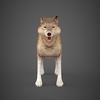 09 19 31 532 wolf 02 4