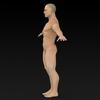 09 20 53 944 muscular human 06 4