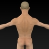 09 20 54 46 muscular human 07 4