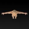 09 20 54 910 muscular human 11 4