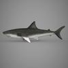 09 20 55 389 realistic shark 03 4