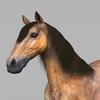 09 20 57 632 realistic muscular horse 02 4