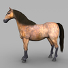 09 20 58 397 realistic muscular horse 05 4