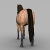 09 20 58 487 realistic muscular horse 06 4