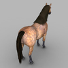 09 20 58 600 realistic muscular horse 07 4
