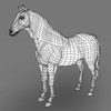 09 21 01 195 realistic muscular horse 11 4