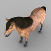 09 21 01 58 realistic muscular horse 10 4