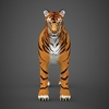 09 21 04 925 realistic tiger 03 4