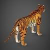 09 21 05 383 realistic tiger 06 4