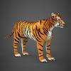 09 21 05 482 realistic tiger 07 4