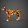 09 21 05 75 realistic tiger 04 4