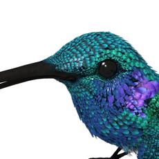 HummingBird 01_maya2010 3D Model