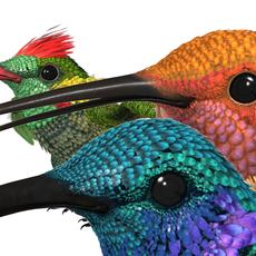 HummingBird Bundle_3ds max 2010 3D Model