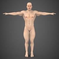 Muscular Male 3D Model