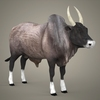 19 43 49 165 realistic ox 06 4